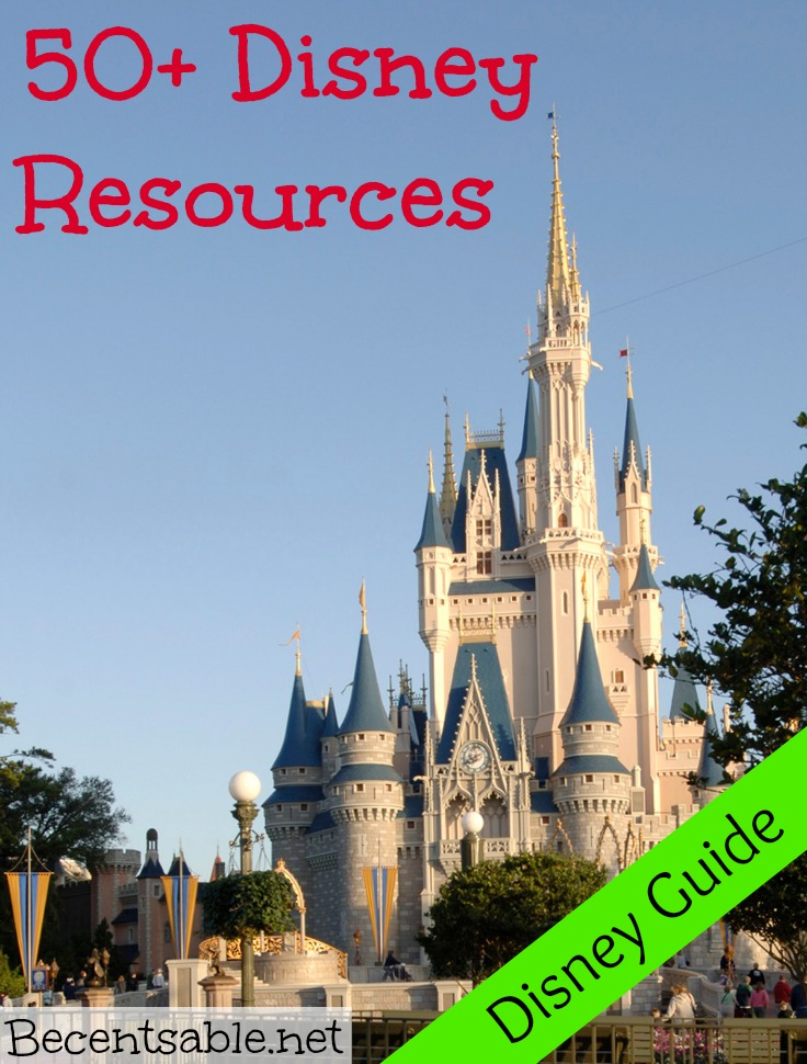 Disney world guide adults