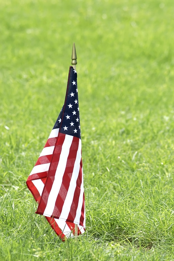 Veterans day coupons 2014 gap outlet home depot and more